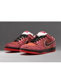 CONCEPTS x NIKE Dunk SB Low Red Lobster--313170-661